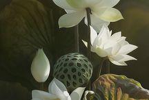 참고자료 (식물)
