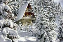 snow int.