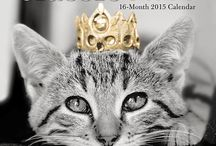 Graphique de France 2015 Mini Calendars / A Gorgeous range of 16 month Graphique Mini Calendars for 2015 to start organising the new year in style.