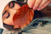 autumn / by Sandra L.