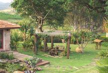 Jardim magico