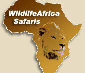 Wildlifeafrica / Wildlifeafrica is an online web portal site for the give the tips for travel in the africa.