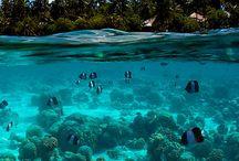 Maldives Travel Inspiration