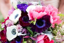 Wedding Bouquets / Wedding Bouquets created by Florals by Jenny and designs that I admire by others.