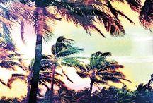 pop ^^^BEACH