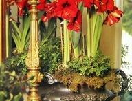 Christmas Arrangements & Bulbs