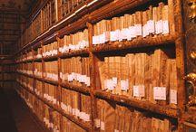 Extraiga la humedad de sus libros/Biblioteca/Archivos