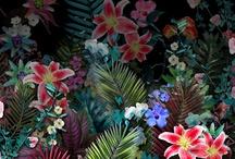 Leaf n flower