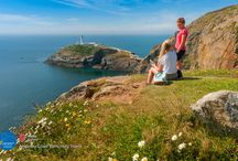 Sights on the Wales Coast Path / Experience the sights and sounds along our 870 mile coastal trail.