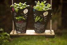 Flower / Herbs / Plants Packaging