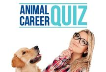 Coaching for Animal Lovers - Life&Career / PURPOSE ANIMAL is dedicated to helping ANIMAL LOVERS discover and step into their BEST LIFE & DREAM CAREER!