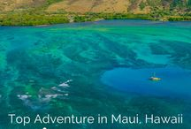 Hawaii Travel / Tips, advice, and attraction guides for travel to Hawaii. United States | South Pacific | Oahu | Honolulu | Kauai