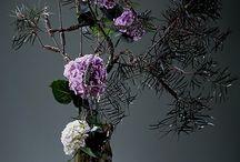 Japan flower ideas