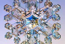 Snowflakes / by Donnie Skelton