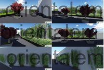 nef 9 landscape preview-orientalem-temmuz peyzaj / nef 9 landscape preview-orientalem-temmuz peyzaj
