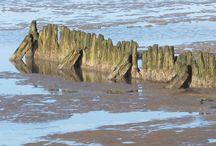 waddenzee / de kust van wieringen