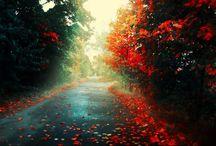 szép képek / kellemes hangulat árad belőlük ki és jó közérzést ad  :)