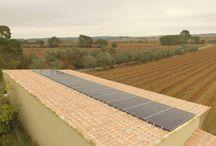 location de toiture agricole panneau solaire