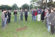 Día del árbol en FIUNA / La Facultad de Ingeniería de la Universidad Nacional de Asunción (FIUNA) de adhiere al día del árbol con el cultivo de variedades de plantines en al patio de la institución. La iniciativa estuvo encabezada por el decano, Ing. Isacio Vallejos, quien resaltó el cambio del concepto del desarrollo.