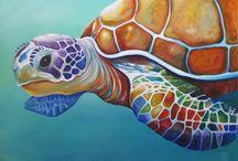 kaplumbağa turtle