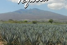 Mexico - Where to go, eat and drink