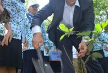 North Sulawesi / news from North Sulawesi