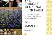 Traditional Chinese Herbalism / Herb monographs, recipes, theory and inspired pictures of Traditional Chinese Herbalism.