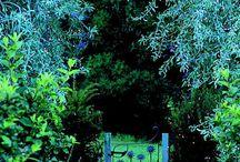 Garden: Features etc