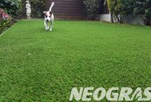 Artificial Grass for Dogs & Pets