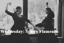 "Flamenco / Experience the Spanish food and Spanish artform ""Flamenco"" at Mi Luna, Houston"