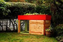 Chicken coop project