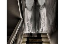 Halloween / by Shelly Bee