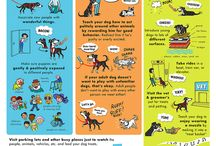 Dog training / Tips for you and Your dog.