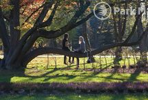 Realizacja - Park Zdrojowy w Rabce Zdrój / Tworzymy z myślą o estetyce, rekreacji oraz odpoczynku.