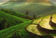 Südostasien - Thailand, Vietnam, Myanmar & Co.