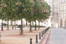 Фотография Парижа