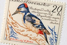 Birds-Postage Stamps / by Dona Deam