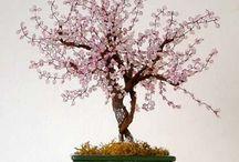bonsai con perline