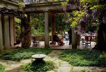 rock garden / patios