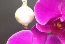 Handblown Art Glass Orchid Stakes / The transparency of glass looks so great next to a flower's blooms.  So I  found a glass artist who could make my designs come to life.  They are beautiful in fresh flowers and in orchids they replace the support stake.