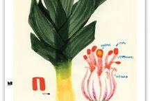 art | drawings | Food