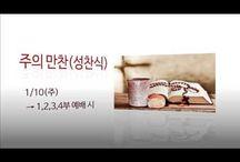 성광뉴스 / 화정성광침례교회