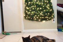 Árvores Natal e Gatos