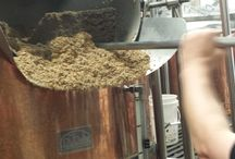 Brewing at Hopvine / All about Brewing Beer at Hopvine Brewing Company