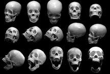 skulls n shit