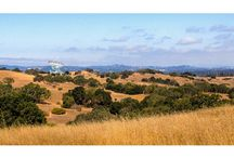 Landscapes from hiking trails
