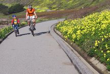Bikes and Bike Trails / A great place to forget about your day job by thinking about biking. Post your favourite biking images to this board. Happy Pinning!