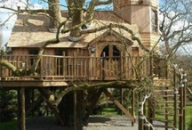 Ultimate tree houses / by Kim Armstrong