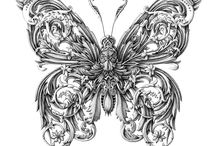 dessin insectes papillons