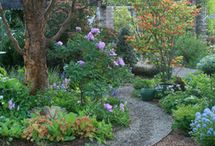 Traditional Landscapes / Traditional landscaping ideas can complement your home's architecture and design, and the right plants, flowers and shrubbery can greatly enhance your curb appeal by adding color, texture and even fragrance to your yard.